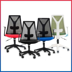 Evio Asia Ergonomic Mid-Back Mesh Office Chair (Model MC119)
