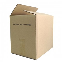 (250mmx195mmx160mm, Set of 10) Evio Asia Small Cardboard Shipping Box Kotak